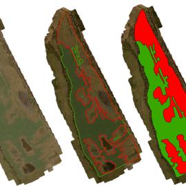 Ohraničená aplikačná mapa porastu repky olejnej